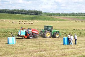 Необычно выглядят на полях фермера Владимира Васильевича Красавина рулоны сена и сенажа в сетках и пленке